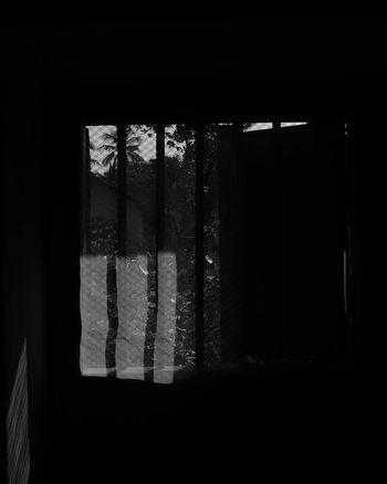 Blackandwhite Morningtime Darknessandlight Window Sunrays DSLR Nikon D3300