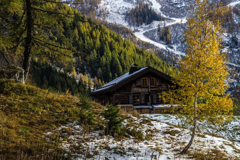 trelechamps,chamonix,haute savoie,france Tree Architecture Built Structure Forest Plant Land Scenics - Nature Beauty In Nature Nature Tranquility No People Tranquil Scene Winter Non-urban Scene Building Exterior Landscape Cold Temperature Snow Day Mountain WoodLand Outdoors Chalet Pine Tree