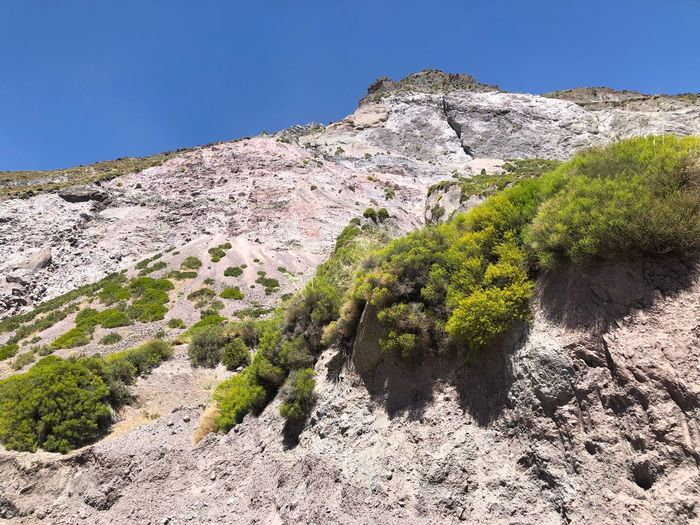Summer in the Mountain Chile Embalse El Yeso Cajon Del Maipo Peaceful Imponente Day Green Color Sunlight Tranquil Scene Land Scenics - Nature Clear Sky Outdoors Tree Non-urban Scene Mountain Idyllic Rock