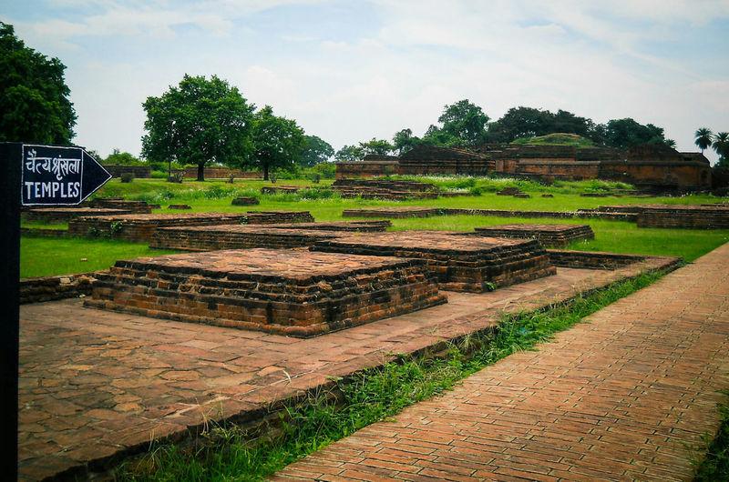 Ruins Nalanda University Green Landscape Beautiful Nature Greenary Trees Enjoying Nature Hystorical Centre Hystorical Buildings Landscapes With WhiteWall The Architect - 2016 EyeEm Awards