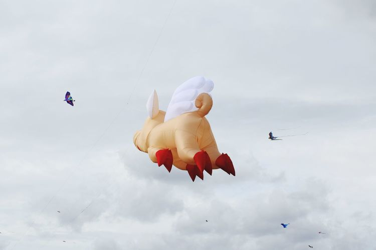 Low angle view of inflatable pig toy flying against sky
