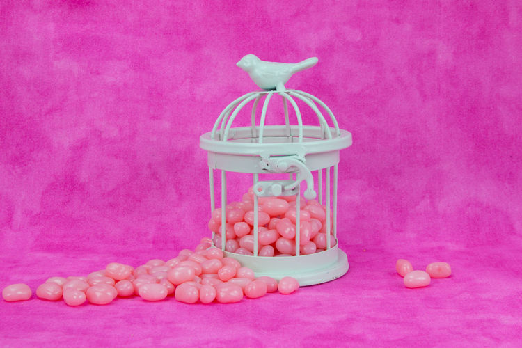 Birdcage with pink candy Pink Bird Cage Candy Close-up Day Food Indoors  No People Pink Background Pink Color Spring Springtime Still Life