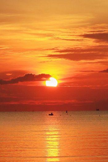 ไข่แดง | ในถุ้ง | ท่าศาลา Sun Sky Sea Nakhon Si Thammarat Thailand Bannaithung