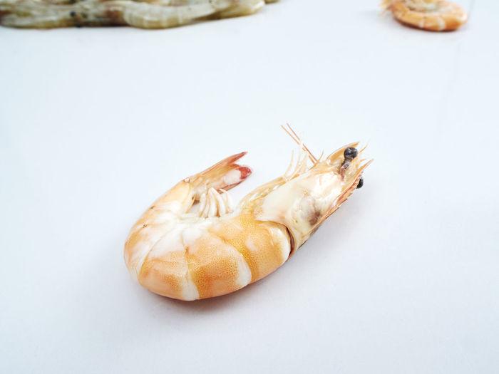 Fresh shrimp