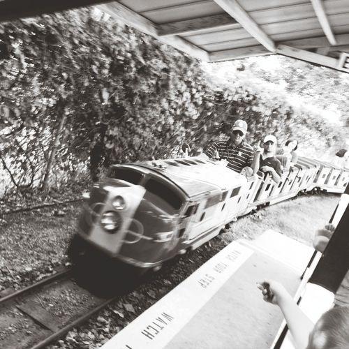 Amusementpark Riding The Train