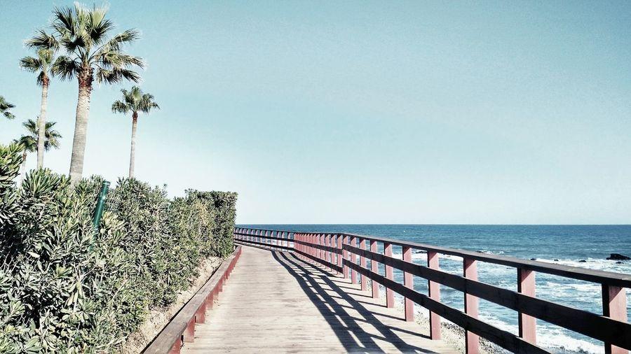 Horizon Over Water Sea Beach Nature Palmtrees Calahonda Sendalitoralmijas Malaga Andalucía Spaın