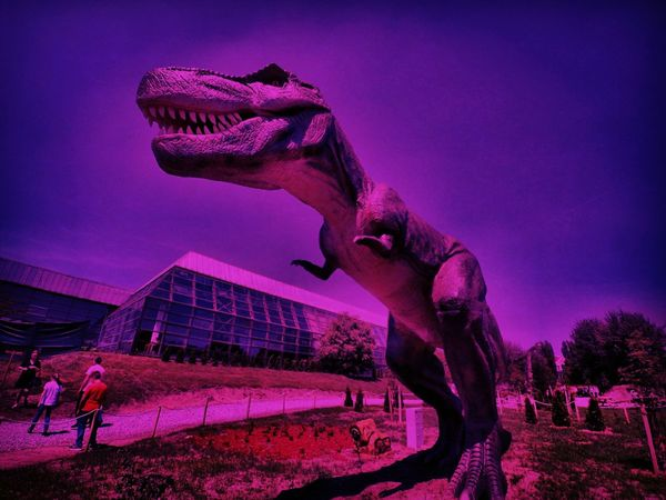 Serbia Novisad Dinosaur DinoPark First Eyeem Photo