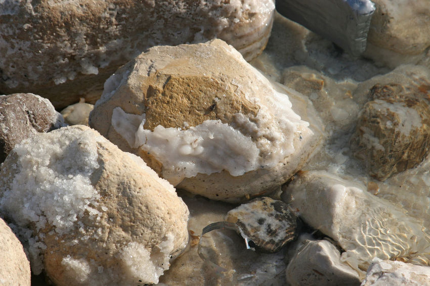 The big crystal of salt of Dead Sea Crystal Dead Sea  Environment Formation Health Israel Jordan Medicine Middle East Mineral Nature Rock Rock - Object Salt Sea Seaspray Sediments Stone Stone - Object Therapy Water