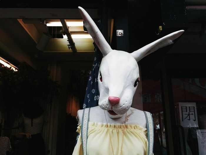 Art Bunny  Close-up Fashion Harajuku Illuminated Japan Mask No People White