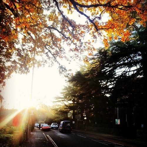 GoodWather Sunshine Goodmorning