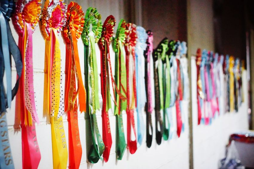 rosettes Rosette  Sash  Sashes Rosettes Ribbon Ribbons Prize Prizes Trophies Trophy Horse Horse Show Horse Shows Competition Competitions Winner Multi Colored For Sale Market Variation Indoors  Retail  Large Group Of Objects No People Choice Day Close-up Freshness
