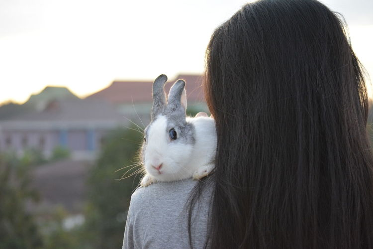 Rear view of woman with rabbit on shoulder against sky