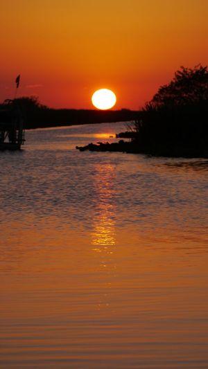 Everglades  Sunset Colorful Orange Orange Water Blue Water Gold Water Orange Sky Airboat