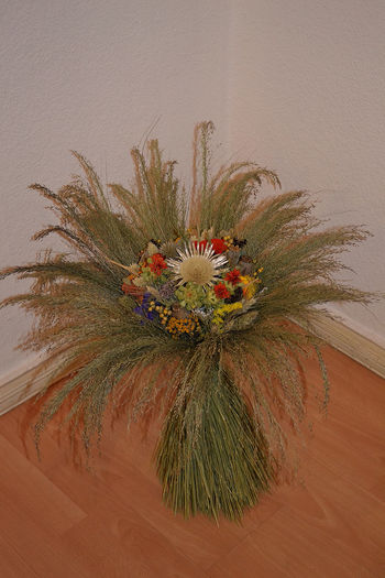 Art And Craft Autumn Colors Autumn In The Living Room Bought In Weima Creativity Flower Arrangement Green Illustration Multi Colored My Straw Flower No People Straw Flower Studio Shot White Background