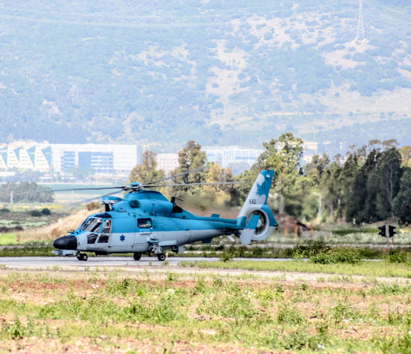 AS-565SA Panther AS-565SA Aviation Aviationphotography Blue Day Field Grass Grassy Helicopter Israeli Air Force Landscape Military Mode Of Transport Mountain Nature Outdoors Panther Runway Sky Taxiing Tree View