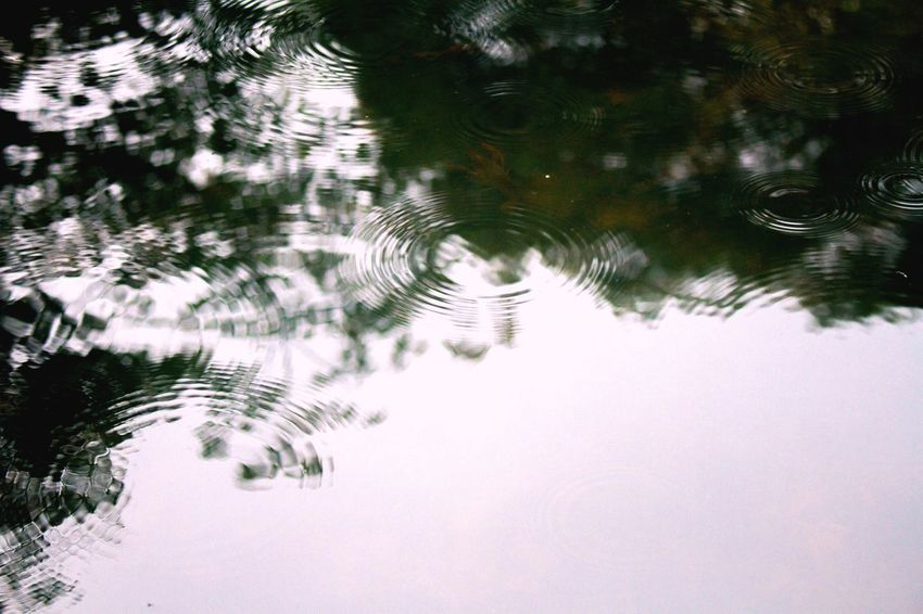 OpenEdit Reflection Water Lake Rippled Nature Waterfront No People Outdoors Tree Puddle Day EyeEm Best Shots Nature Beauty In Nature