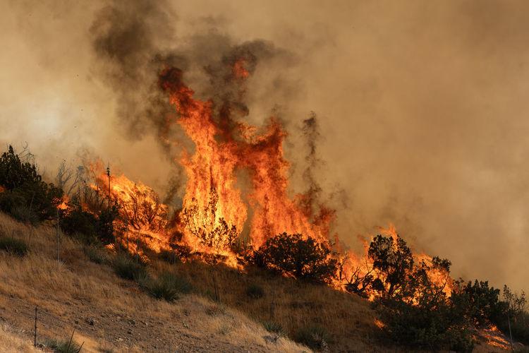 Panoramic view of bonfire