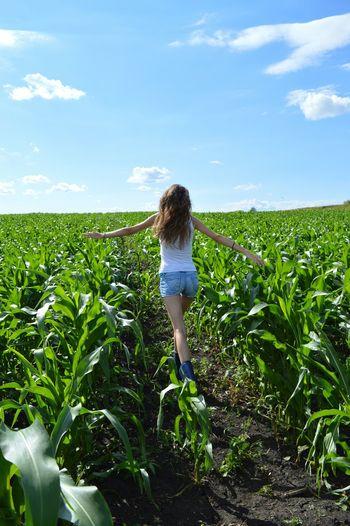 Nature Nature_collection Landscape Landscape_Collection Eyem Best Shots Ural Village Life Corn Sun Fieldscape