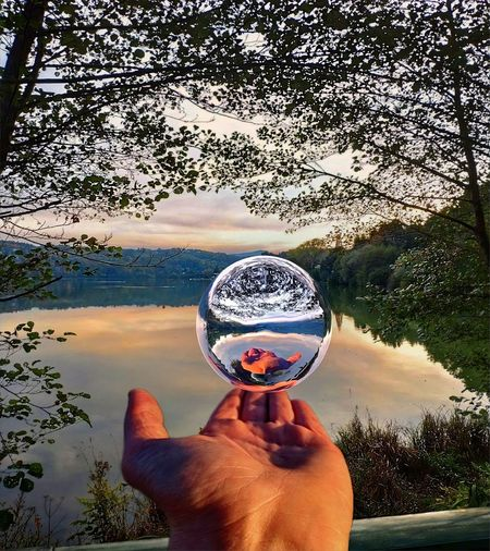 see through Human Hand Water Reflection Holding Personal Perspective Tree Sky Close-up Crystal Ball Cropped Human Finger Crystal Finger Palm Globe Lakeside Landscape Lake Countryside Crystal Glassware