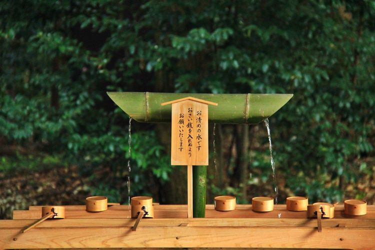 Close-up of japanese text on table and traditional bamboo fountain against trees