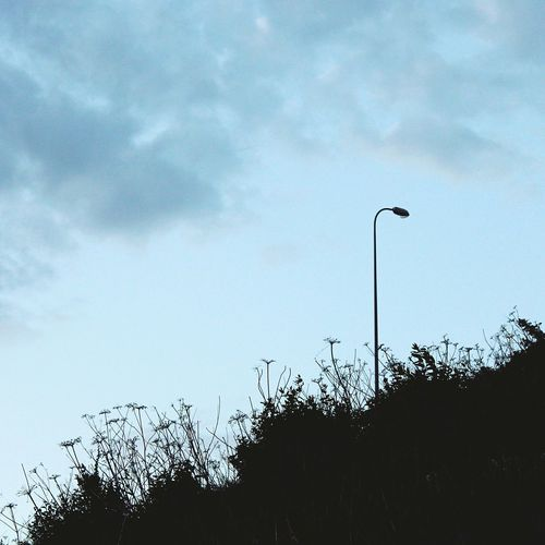 Streetphotography Urban Nature Lamppost Clouds And Sky Silhouette