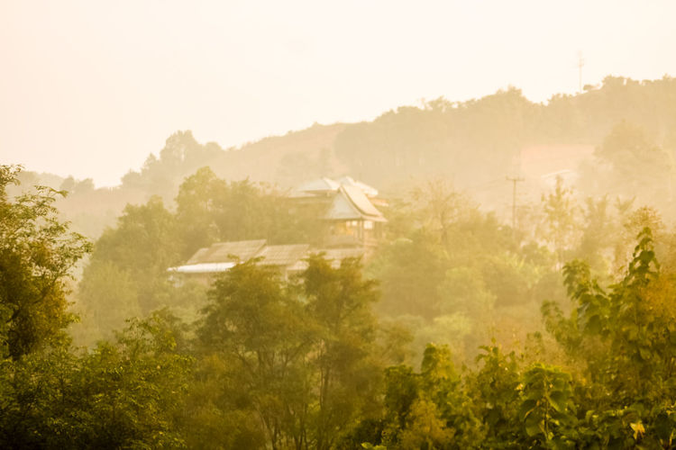 Misty Over The Mountains Misty Architecture Beauty In Nature Building Exterior Day Environment Field Fog Land Landscape Mist Mountain Nature No People Outdoors Phuchidao Plant Scenics - Nature Sky Tranquil Scene Tranquility Tree