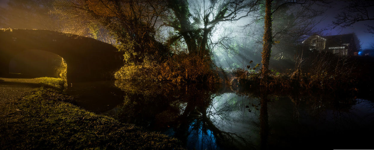 Panorama of a Welsh canal bridge at night Backlight Close Encounters Monmouthshire Monmouthshire Canal Night Photography Nightphotography Wales Beauty In Nature Bridge Canal Canal Bridge Nature Night No People Outdoors Sinister Spooky Tree Water