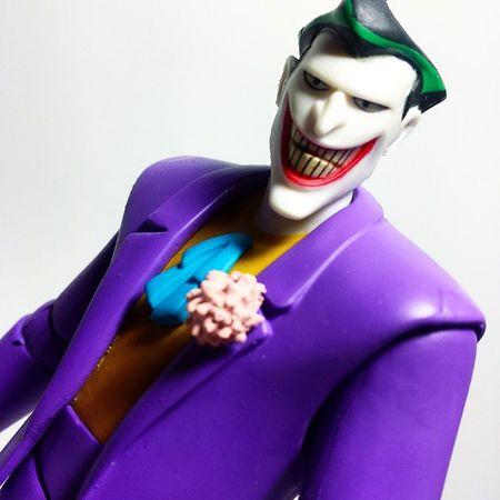Hello, Bats... Batman Dccomics Thedarkknight Dcuniverse Dcnation DC Darkknight Joker Thejoker Jokerhere Batmananimatedseries Markhamill Clownprinceofcrime Toypizza Toysarehellasick Toycollector Toycommunity Toycollection Toyphotography
