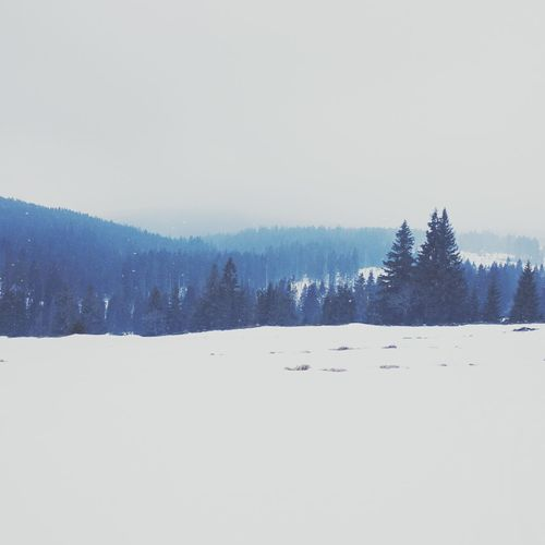 Breathe! Mountains Snow View Cross Country Skiing Šumava Fog Open Edit