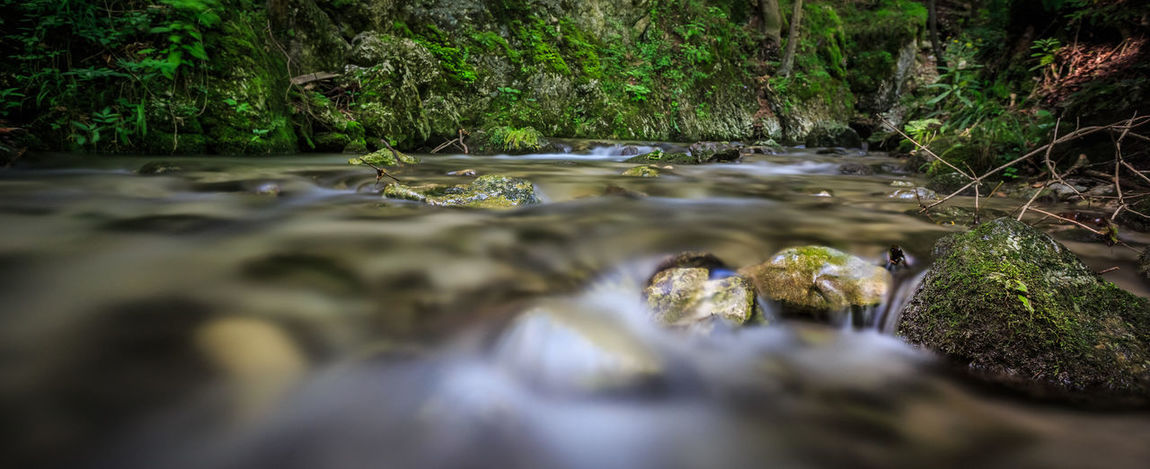 Myrafälle @ Austria 🇦🇹 Beauty In Nature Close-up Day Flowing Water Forest Moss Motion Myrafällle Nature No People Outdoors Rock - Object Running Water Scenics Selective Focus Shallow Stream Stream - Flowing Water Tranquility Tree Water Waterfall Waterfront