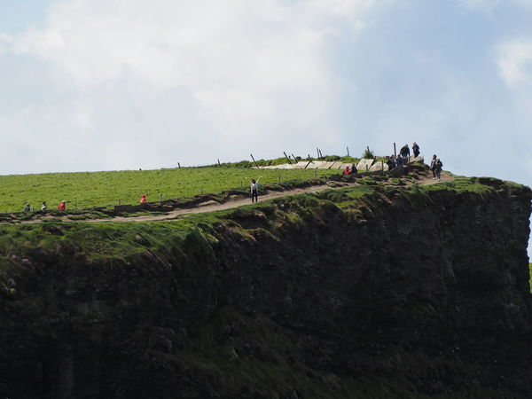 Adult Agriculture Cliffs Cliffs Of Moher  Cliffside Day Farm Farmer Field Ireland Irish Landscape Nature Outdoors People Stupid Girl Travel Travel Destinations Waving Working