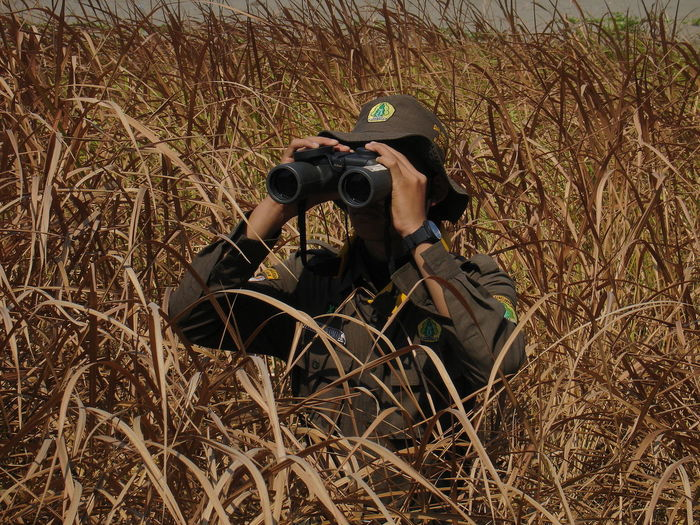 Man photographing on field
