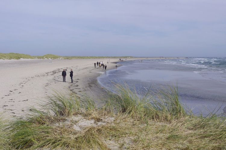 Beach Nature Sea Water Sand Scenics Tranquil Scene Beauty In Nature Outdoors Real People Tranquility Day Sky Horizon Over Water Men People Skagen Denmark
