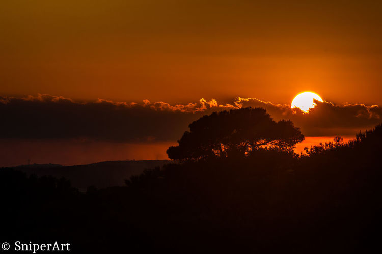 Beauty In Nature Day Nature No People Outdoors Scenics Silhouette Sky Sun Sunset Tranquil Scene Tranquility Tree