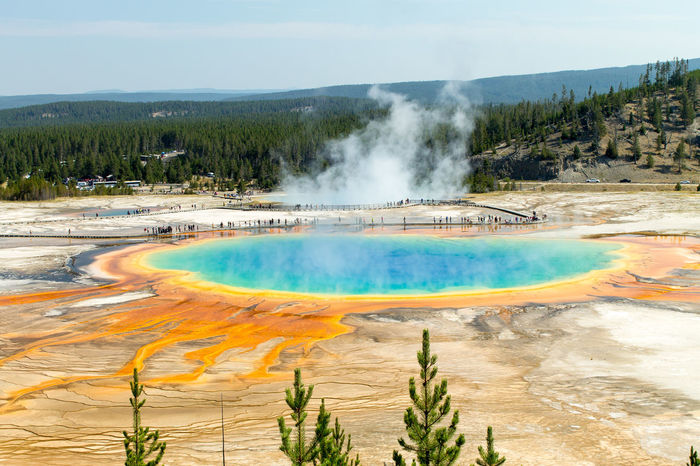 Yellowstone Yellowstone National Park Color Day Erupting Geology Geothermal  Geyser Grand Prismatic Spring Hot Spring Hotspring Landscape Nature Outdoors Physical Geography Scenics Travel Destinations Volcanic Landscape Water
