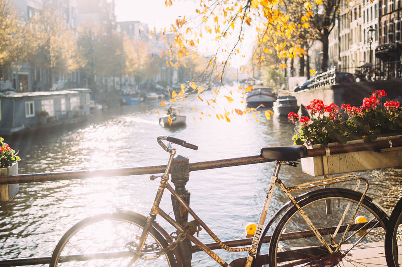 Transportation Water Architecture Bicycle City Amsterdam Canal Netherlands Outdoors Land Vehicle Autumn Fall