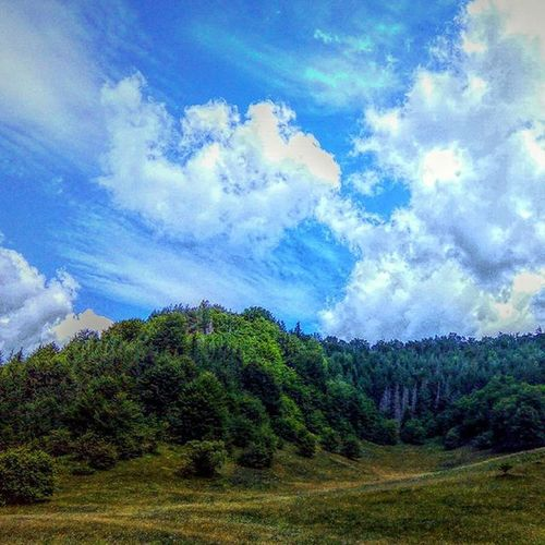 Sky Bluesky Trees Forest HDR Storm Vibrance Truecolors Bogdann2309 Romania Likeforlike Like4like photo by me