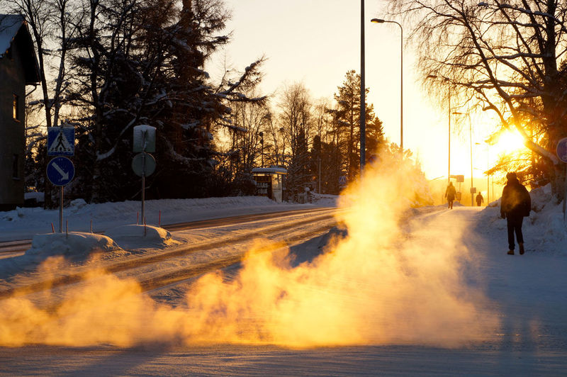 Winter in Rovaniemi Beauty In Nature Cold Temperature Day Nature Outdoors Snow Travel Travel Destinations Travel Photography Tree Winter