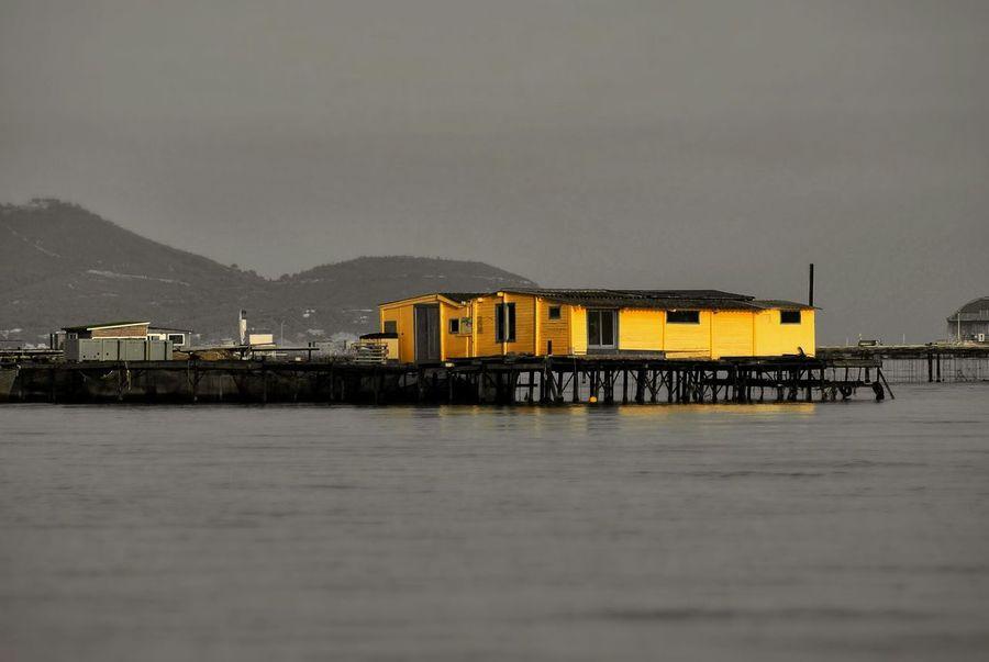 Ponton Maison Flottante Bicolor House