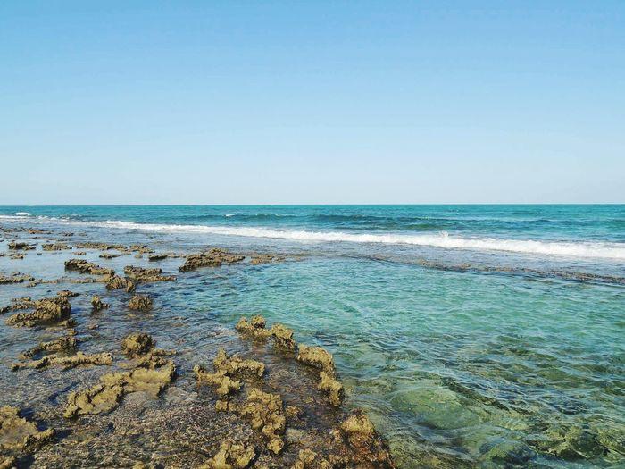 Nature Beachphotography enjoying life First Eyeem Photo Beachlifestyle Brazilinpictures Wonderful Pernambuco -Brazil