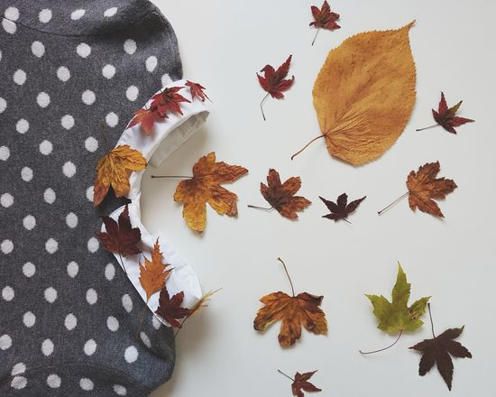 Woosh Variation No People Nature White Background Cozy Clothes Foilage EyeEm Best Shots Fashion Colored Leaves The Week On EyeEm Tree Large Group Of Objects Jumper Dots Pullover Clothing Textile Art Collar Childhood Autumn Minimalism Pattern
