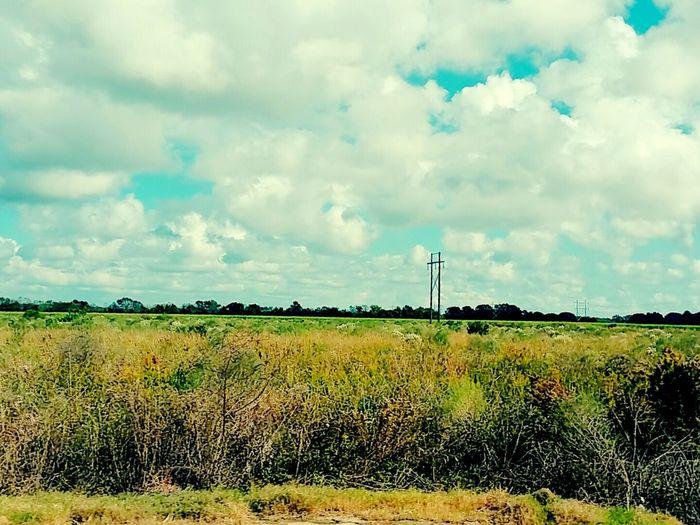 Eye Of Ky Nature Photography Natural Beauty Louisianaphotography Louisiana