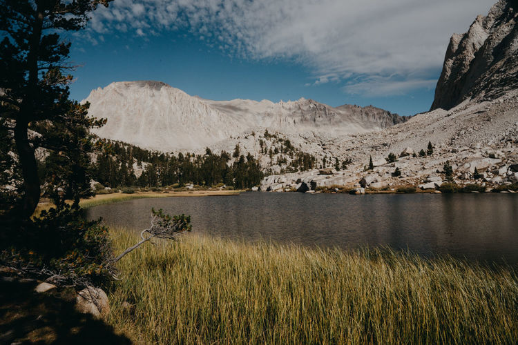 Hiking Thru Hiking Sierra Nevada Mountains California Mount Whitney John Muir Trail Pacific Crest Trail Plant Lake Lakeview Mountain Beauty In Nature Tranquil Scene Non-urban Scene Nature Grass No People Growth Mountain Peak Mountain Range Environment Outdoors Scenics - Nature Water Tranquility Sky Day Cloud - Sky Tree