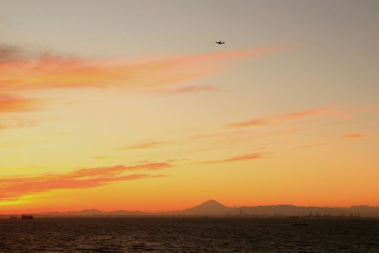 Sunset Flying Silhouette Sea Landscape Sunset_collection Japan Sunsets Tokyobay Tokyo Mt.Fuji Mountain Airplane Orange Color Dramatic Sky Mtfhuji