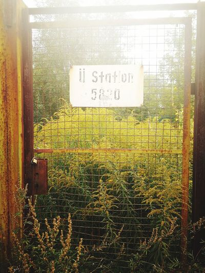 Text Close-up Outdoors Nature Sign Station Old Station Grass Grass Area ü Station Western Script Communication Day No People Gate Old Gate Lock Old Gate Close View Old Gate Berlin
