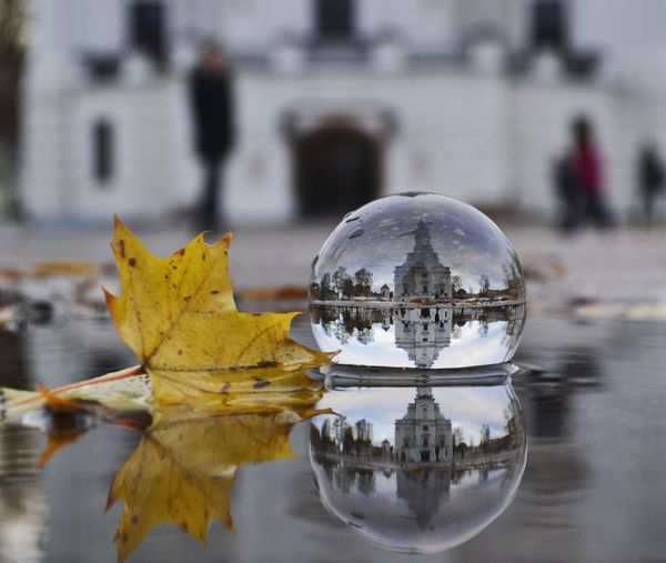Reflection of building in crystal ball by leaf on pond