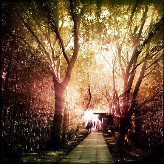 Do you believe in fairytales? ✨🐛🔮⏳🃏🌟✨💫 I do! 🌟💕💕 IgersRio_OBoticario Instatour at Mirante Dona Marta for OBoticario_Rio + Rioeuteamo campaign.... Edited with PixlrExpress Gradgram and Rays 🎨🌟✨💫