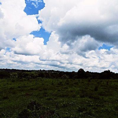 Landscape _____________________________________ TembeaKenya Haiafrika Explorekenya Vscokenya Wanderlust Passionpassport Visualsgang Lifeofadventure IGNairobi Nikonai PotDKenya Agameoftones Minimal_kenya __________________________________________