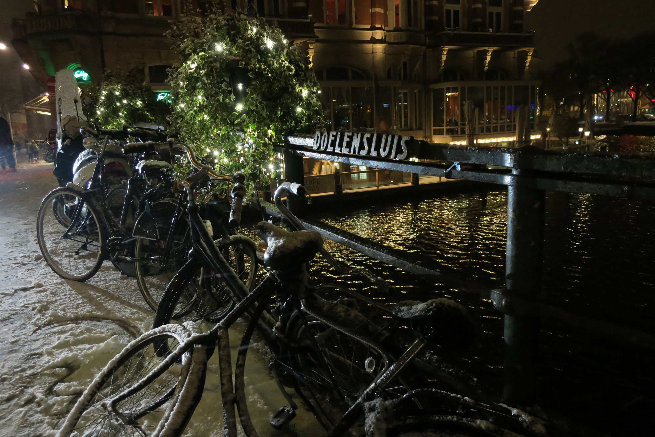water, bicycle, mode of transport, transportation, illuminated, tree, outdoors, no people, night, christmas tree, nature