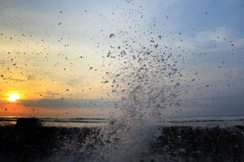 Beauty In Nature Close-up Day Flying Horizon Over Water Large Group Of Animals Nature No People Outdoors Scenics Sea Sky Sunset Water